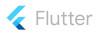 Flutter development programming